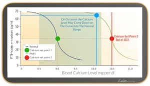 hyperparathyroidism blood calcium level chart with blue dot